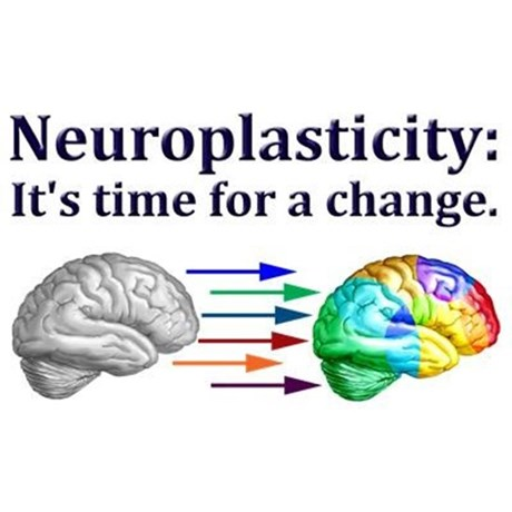 neuroplasticity - it's time for a change