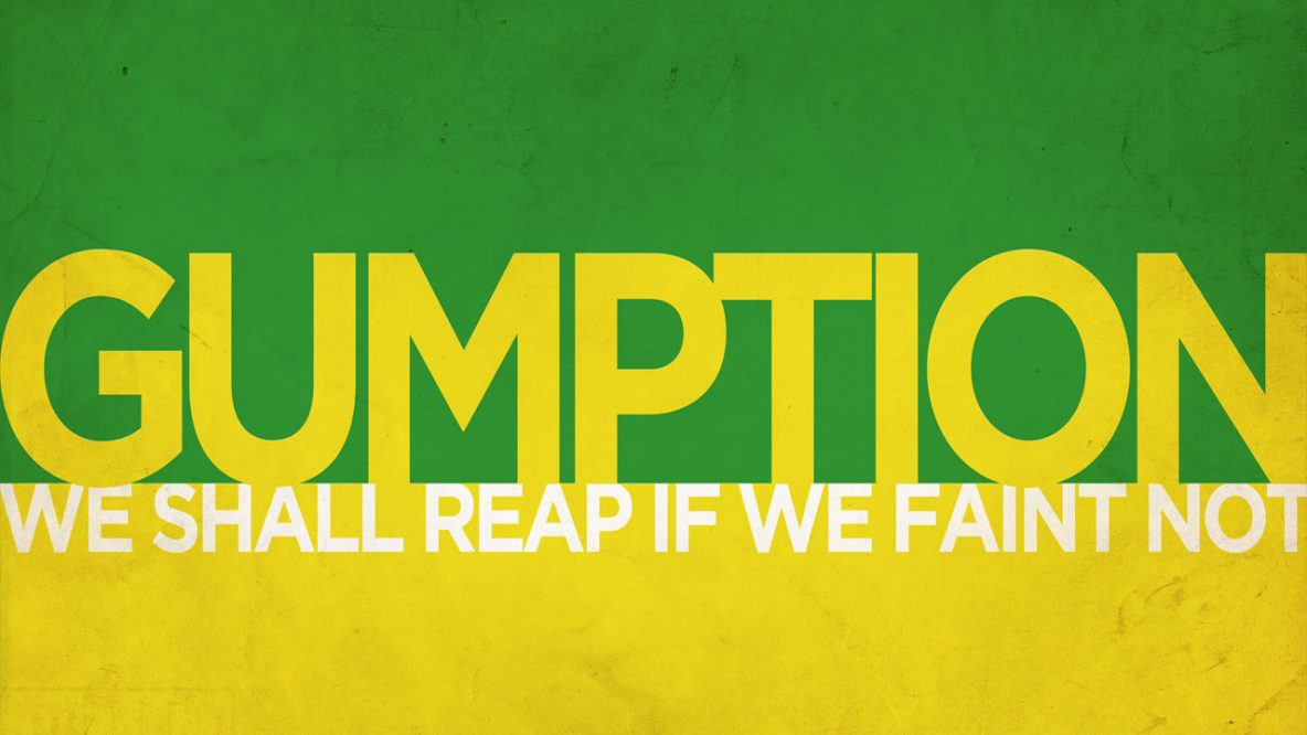 gumption - we shall reap if we faint not