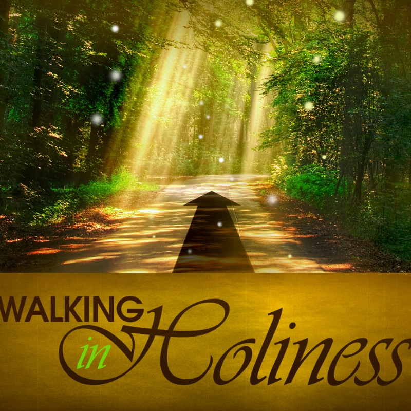 Walking in holiness - path with sunlight beams coming down through trees